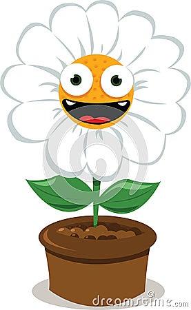 Funny Daisy in a Pot