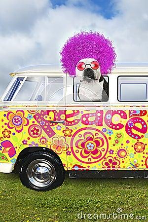 Free Funny Hippie Dog, VW Peace Bus Van Stock Photos - 112156803