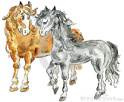 Funny horses couple
