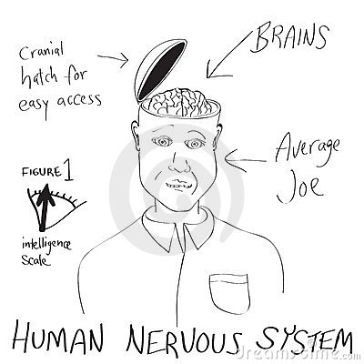 Funny Human Brain Cartoon