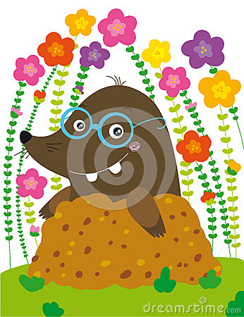 Funny mole