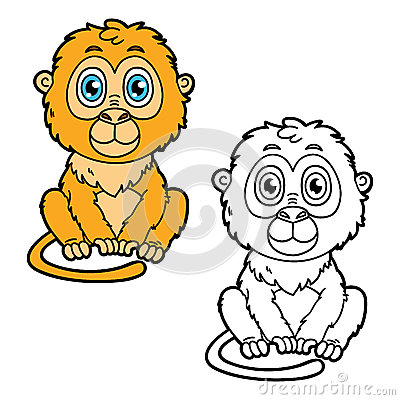Tamarin Cartoons Tamarin Pictures Illustrations And