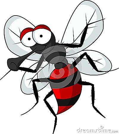 Funny mosquito cartoon