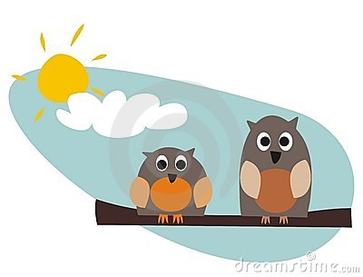 Funny owls sitting on branch on a sunny day
