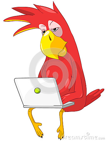 Funny Parrot. Coder.