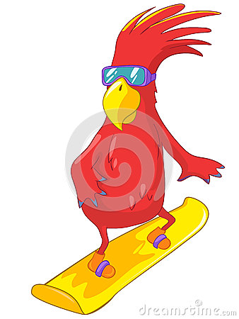 Funny Parrot. Snowboarding