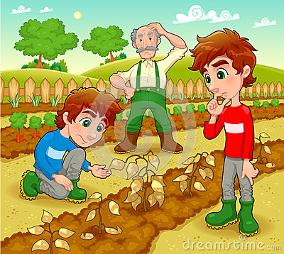 Funny scene in the vegetable garden.
