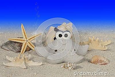 Funny starfish under water