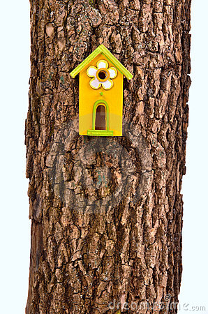 Funny starling-house on a stem isolated