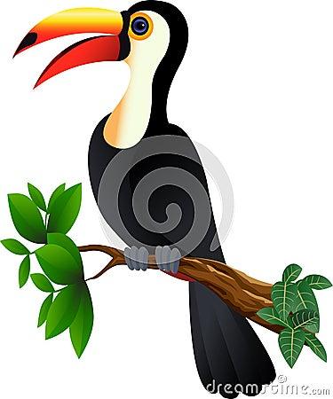 Funny toucan bird