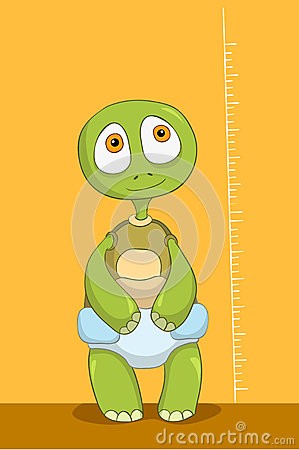 Funny Turtle. Baby Measure.