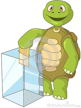 Funny Turtle. Election.