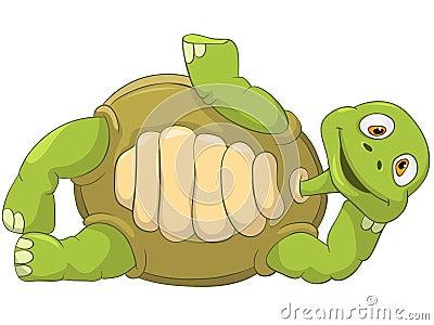Funny Turtle. Lie.
