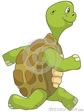 Funny Turtle. Running.