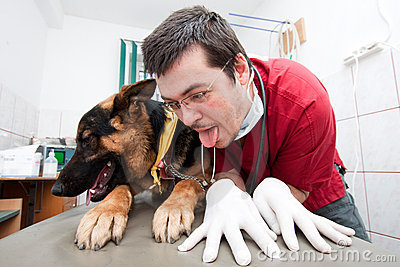 Funny vet with dog