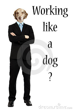 Funny working like a dog concept