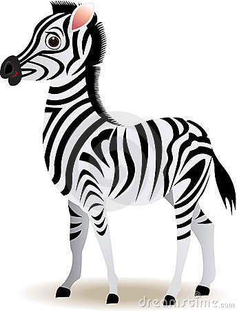 Funny zebra cartoon