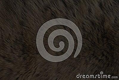 Fur Animal Textures, Bear black