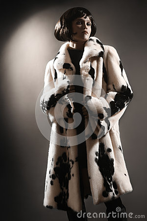 Fur coat winter clothes fashion