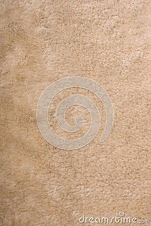 Free Fur Texture Royalty Free Stock Image - 7546756