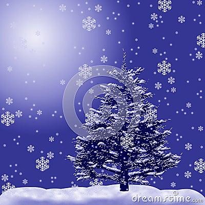 Fur-tree in a snow