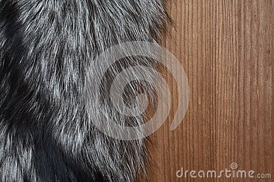 Fur On Wood
