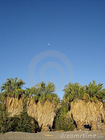 Furnace Creek blue skies