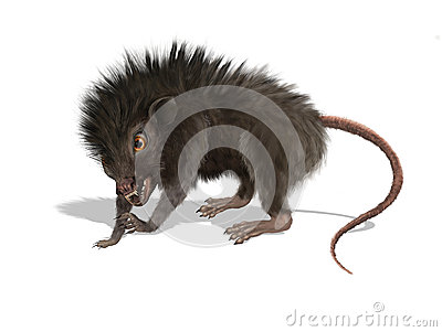 Furry Mutant Rat