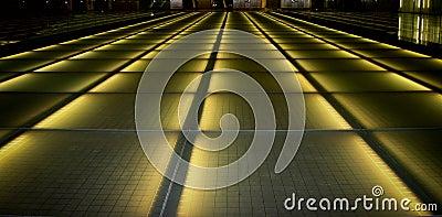 Future path