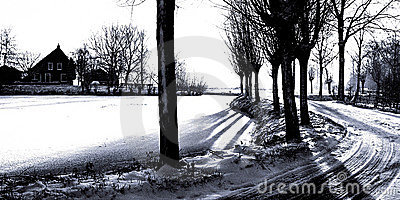 FV Graphic Winterland