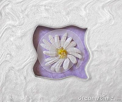 Gänseblümchen-Welle