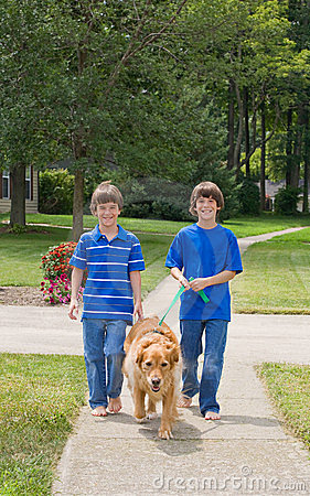 Gå för hundungar