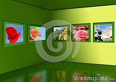 Gallery of flowers.