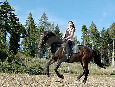 Gallop. Horse and equestrienne.
