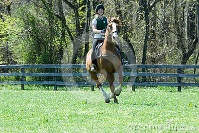 Galloping in field