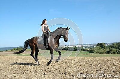 Galop. Cheval et equestrienne.