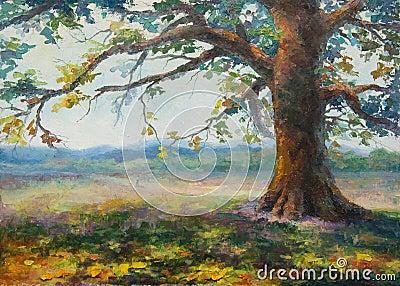 Gammal skugga för ensam oak