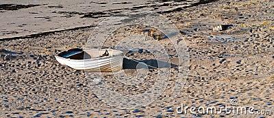 Gammalt fartyg på en kust