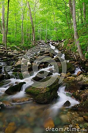 Gap Creek cascades, Cumberland Gap National Park