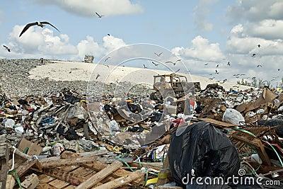 Garbage dump Editorial Photo