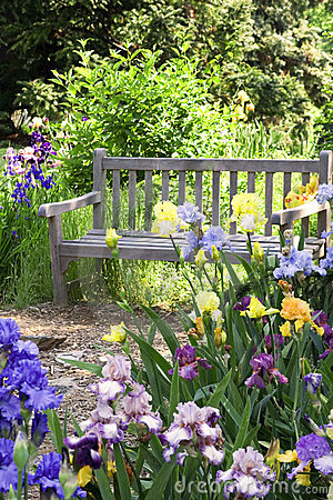 Free Garden Bench Stock Photo - 3123680