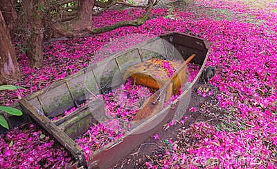 Garden Boat.