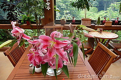 Garden cafe: pink lilies
