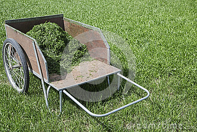 Image Result For Suburban Lawn And Garden