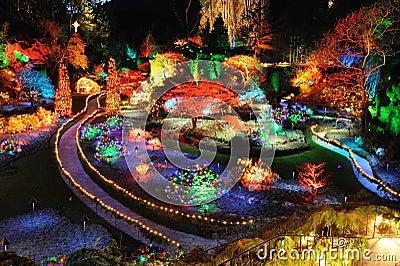 Garden christmas lighting