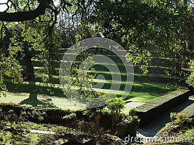 The Garden of Dartington Hall