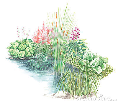Garden design of little pond