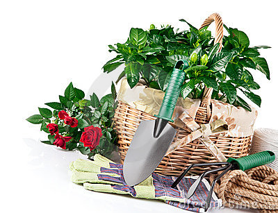Garden equipment with flowers
