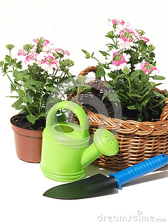 Garden equipment, isolated