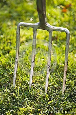 Garden fork in lawn
